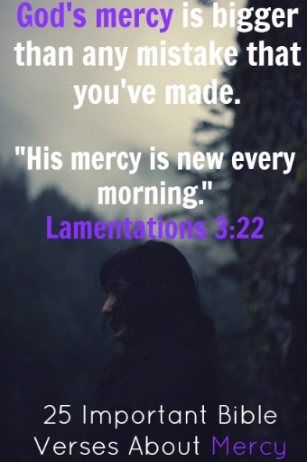 God's Mercy Quotes Best Godsmercyquote